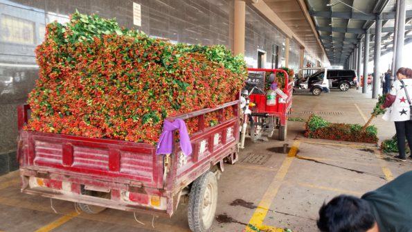 flowertruckkunmingchina