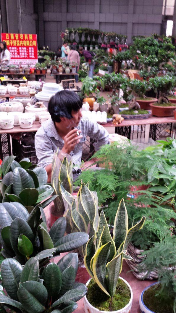 smokingvendorkunmingflowermarketchina